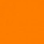 blaze-orange