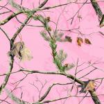 real-tree-pink-camo