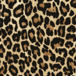 Our Leopard skin pattern is a very realistic 3 d image of one of the favorite big cat prints